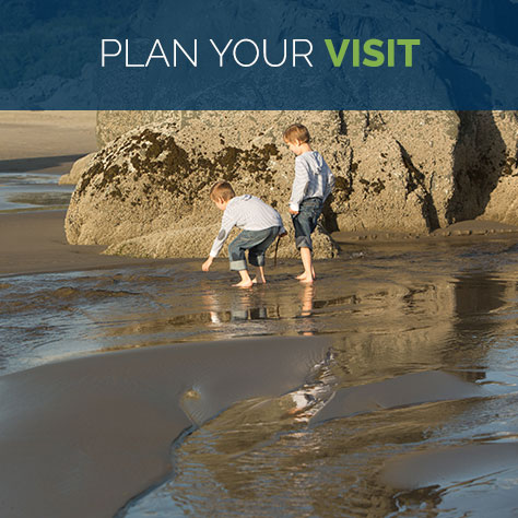 bandon-home-plan-your-visit-alt