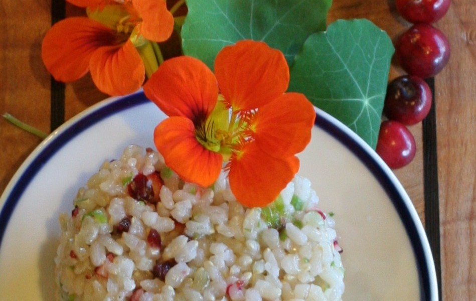 cranberry sticky rice, nasturtium garnish, Bandon, Oregon